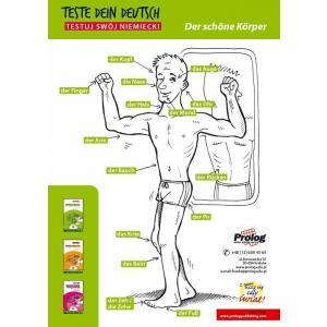Teste dein Deutsch Plakat Der Schone Korper
