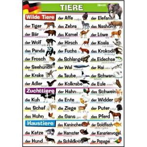 Plansza edukacyjna Niemiecki. Tiere