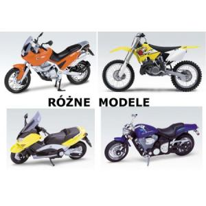 Model Motor /skala 1:18/