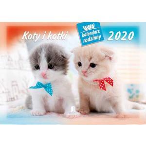 WL09 Kalendarz rodzinny 2020. Koty i kotki