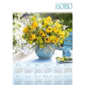 PL31 Kalendarz plakatowy 2020 Tulipany