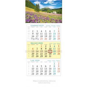 KT07 Kalendarz trójdzielny 2020 Krokusy