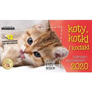 Kalendarz pocztówkowy Koty