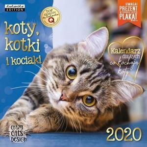 Kalendarz Classic Q Koty
