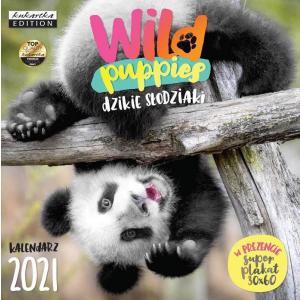 Kalendarz Classic Q WILD PUPPIES 2021