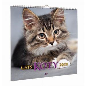 Kalendarz 2020 KD-21 Koty