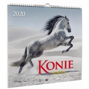 Kalendarz 2020 KD-22 Konie