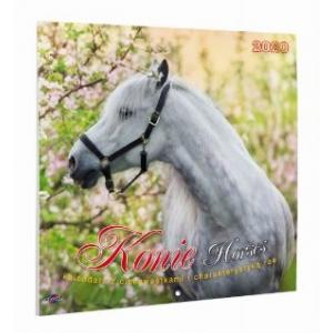 Kalendarz 2020 KAD-11 Konie