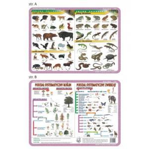 Podkładka edukacyjna 019 Biologia. Ssaki i Płazy Chronione, Podział Systematyczny Roślin i Zwierząt