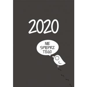 Kalendarz 2020 Ptaszek Staszek