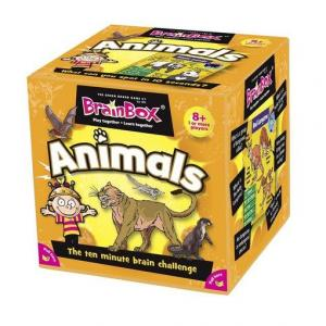 BrainBox. Animals