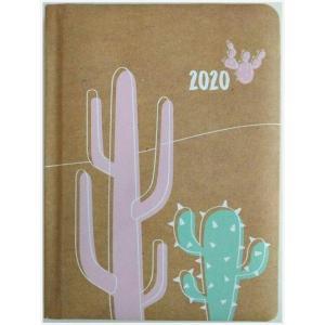 Kalendarz 2020 tygodniowy B6 Kaktus