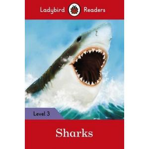 Ladybird Readers Level 3: Sharks