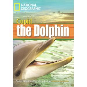 Cupid the Dolphin + CD. Footprint Reading Library
