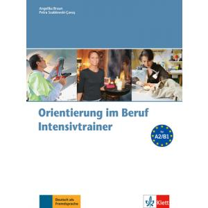 Orientierung im Beruf. Intensivtrainer + CD