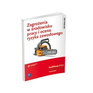 Zagrożenia w Środowisku Pracy i Ocena Ryzyka Zawodowego Kwalifikacja Z.13.3. Ocenianie Ryzyka Zawodowego. Podręcznik Do Nauki Zawodu Technik BHP
