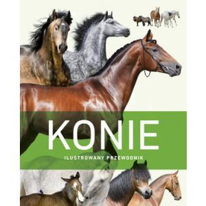 Konie. Ilustrowany przewodnik
