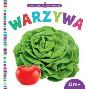Maluszek Poznaje Warzywa