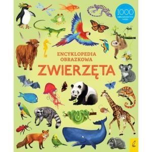 Encyklopedia obrazkowa. Zwierzęta