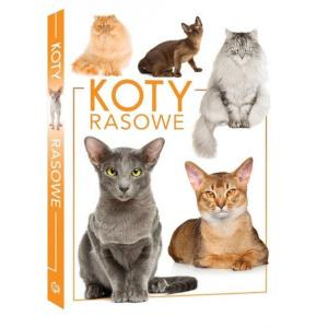 Koty rasowe wyd.2020