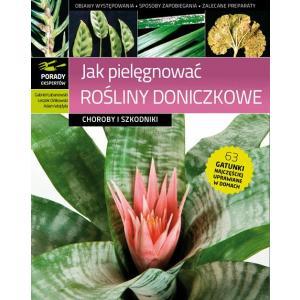 Porady ekspertów. Jak pielęgnować rośliny doniczkowe. Choroby i szkodniki