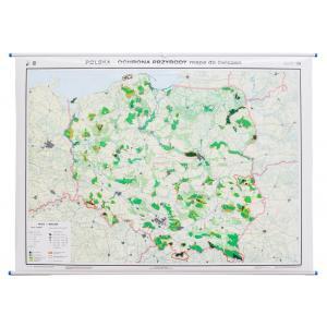 Polska Mapa ścienna Ochrona Przyrody / Konturowa