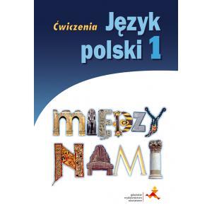Między Nami. Język Polski. Ćwiczenia Wersja B (Do Wersji Wieloletniej). Klasa 1. Gimnazjum