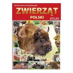 Ilustrowana encyklopedia zwierząt Polski. Atlas