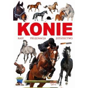 Konie - Rasy, Pielęgnacja, Jeździectwo