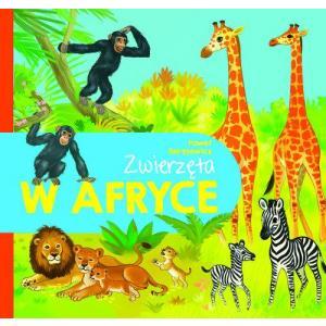 Zwierzęta w Afryce