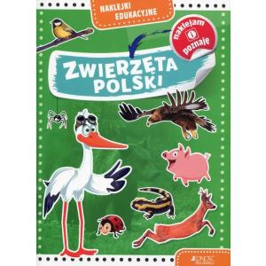 Naklejki edukacyjne Zwierzęta Polski