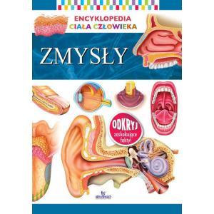 Encyklopedia ciała człowieka Zmysły