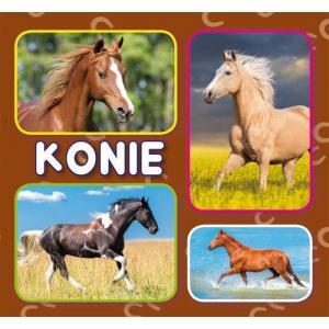 Konie. Książeczka harmonijkowa