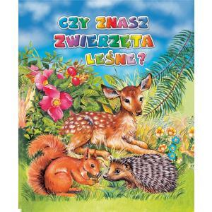 Czy znasz zwierzęta leśne?