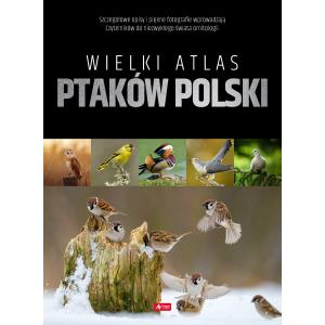 Wielki atlas ptaków Polski