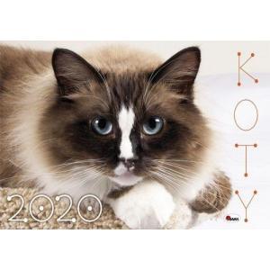 Kalendarz Koty 2020