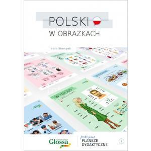 Polski w Obrazkach 1. Praktyczne Plansze Dydaktyczne