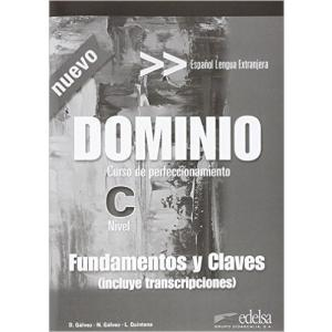 Dominio - fundamentos y claves  /ed. 2016/