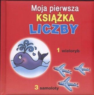 Liczby moja pierwsza książka